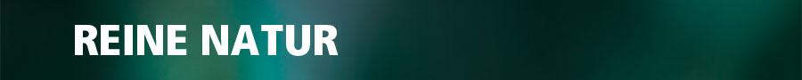 fallbeispiel-bitburger-audio-reinenatur