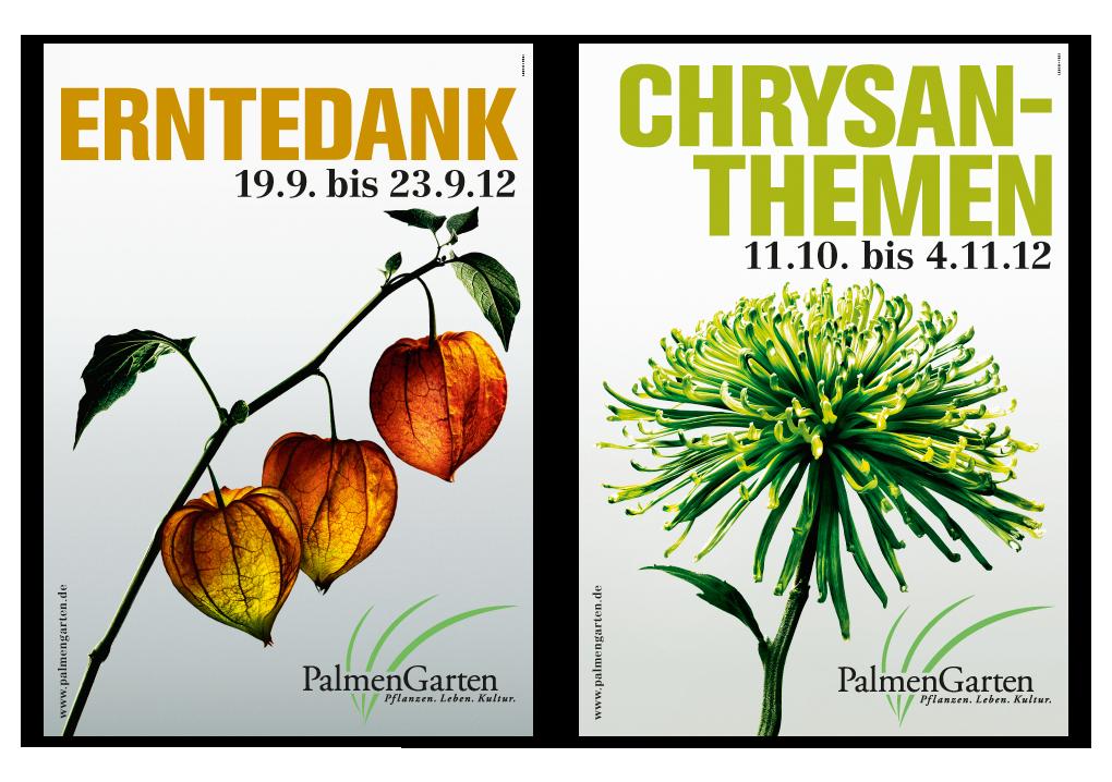 fallbeispiel-palmengarten_1020px_2hoch_erntedank_chrysanthemen