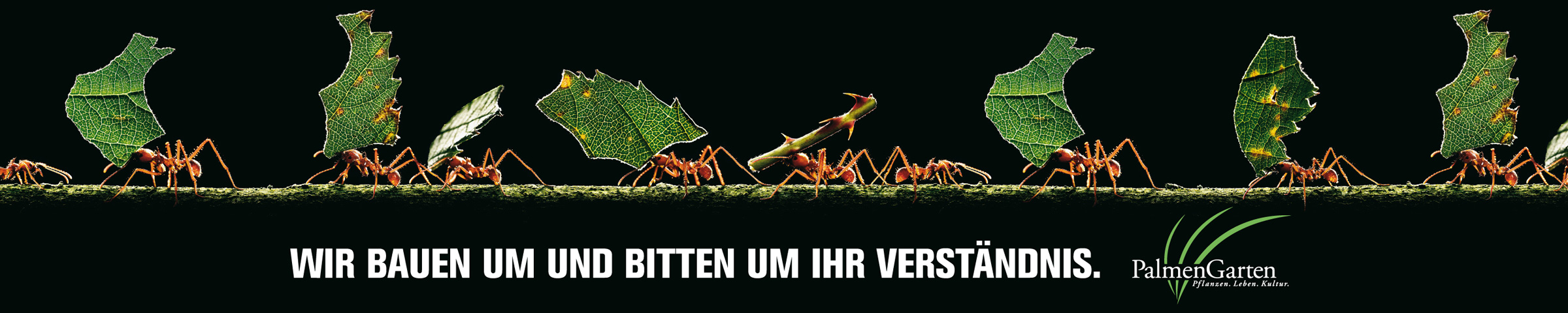 fallbeispiel-palmengarten_bauzaun_2400px